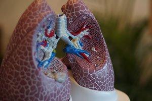 entrenamiento-musculos-respirar